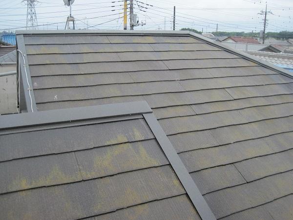 山梨県都留市 屋根塗装 屋根・外壁診断0円 症状 色褪せ 苔 藻 サビ 変色